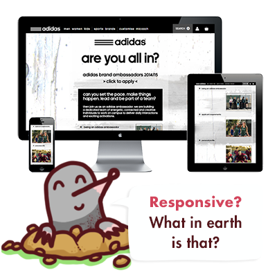 What is a responsive website and why do I need one?